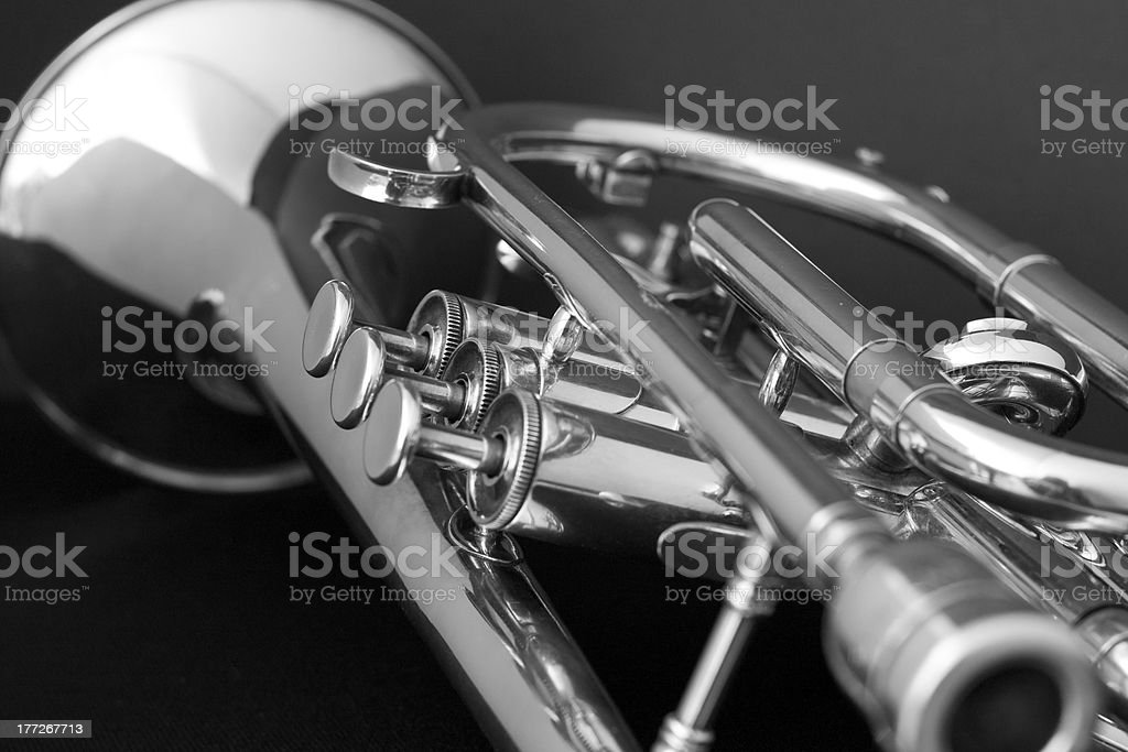 Cornet on black background. stock photo
