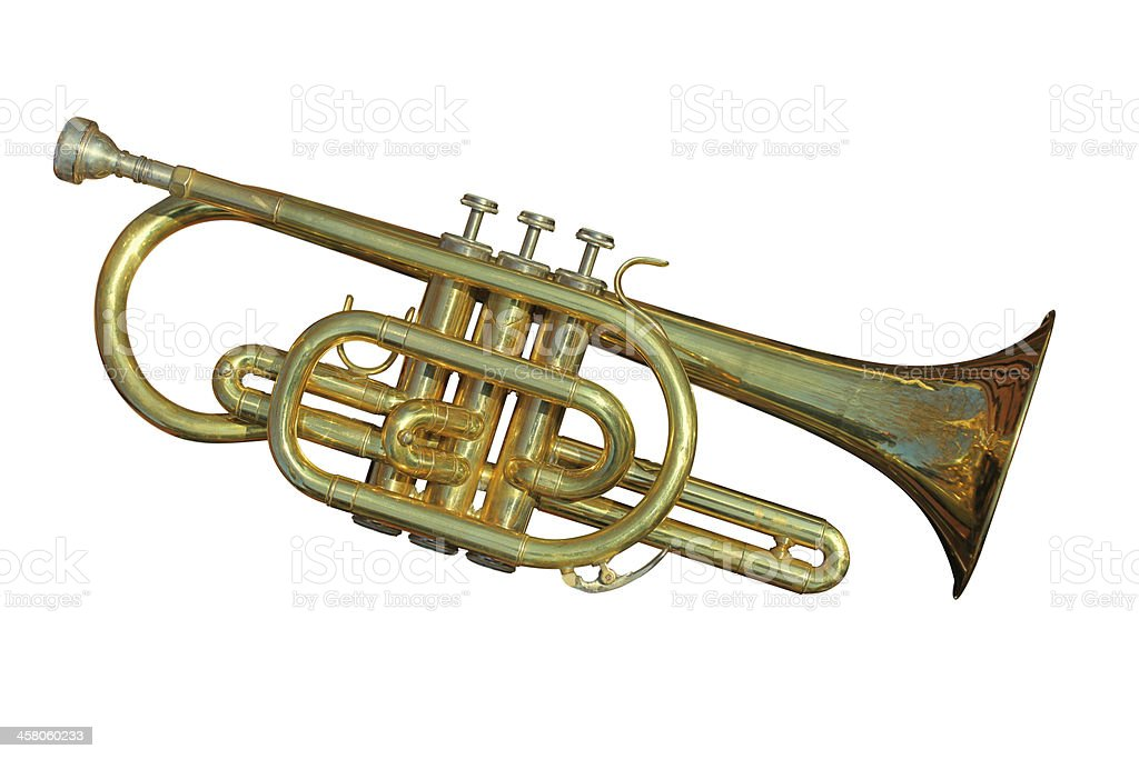 Cornet royalty-free stock photo