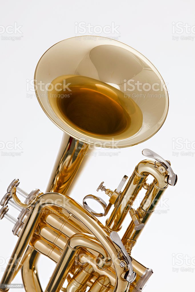 Cornet Trumpet Isolated on White stock photo