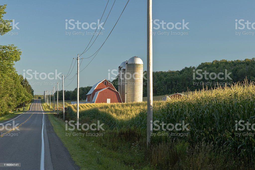 Cornfield and Red Barn at Dawn stock photo