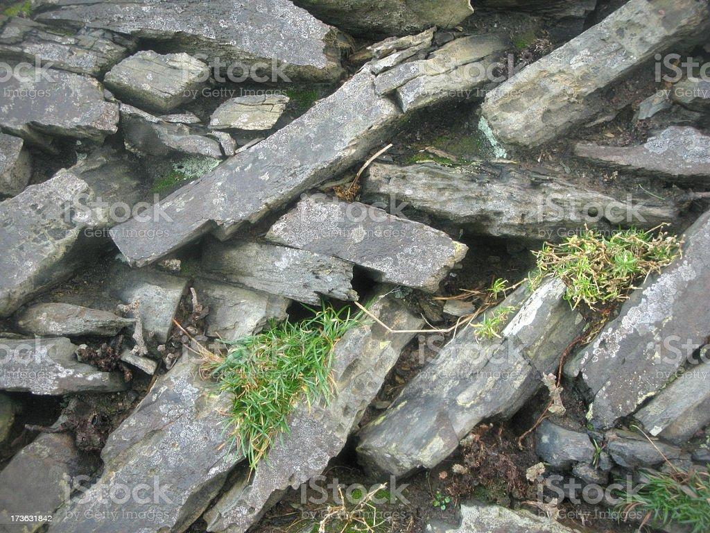 Cornish dry stone wall. stock photo