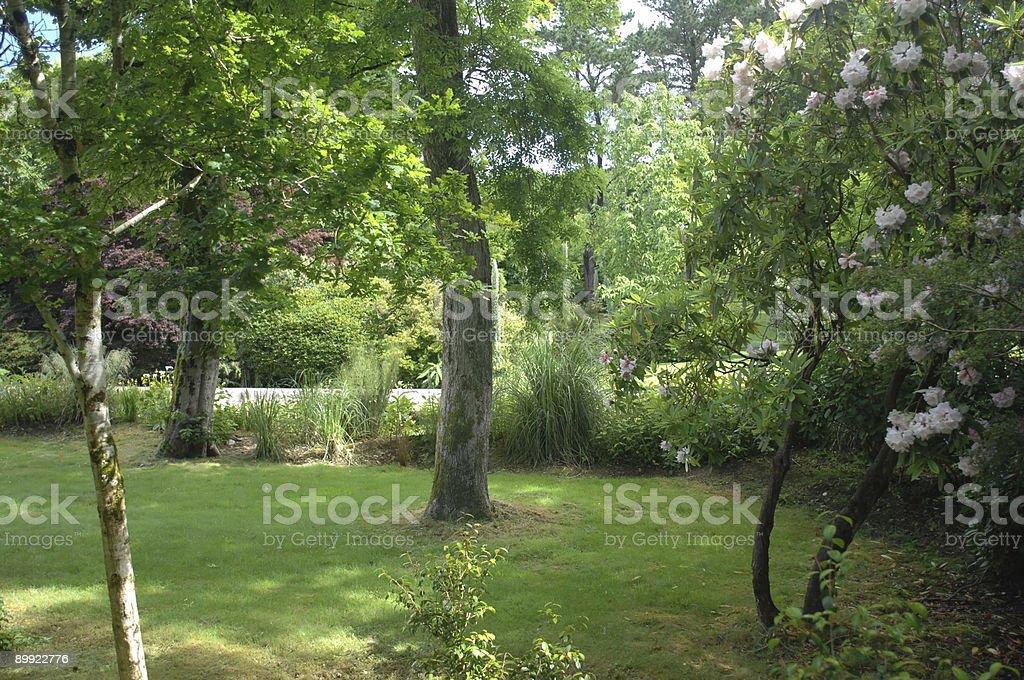 Cornish Garden, Cornwall royalty-free stock photo