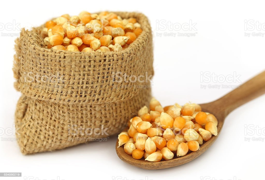 Corns in sack bag with spoon stock photo