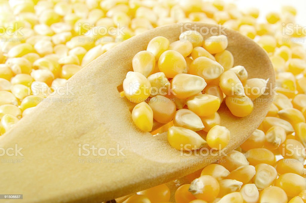 Corns on the wooden spoon royalty-free stock photo
