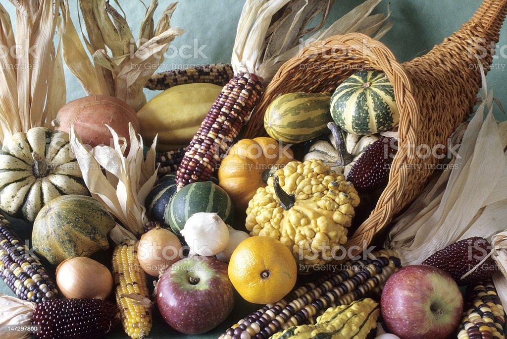 Cornucopia of fall decorative fruits stock photo