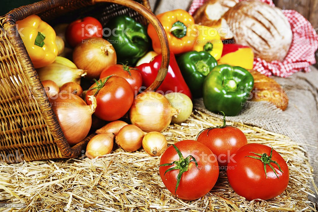 Cornucopia of shiny fresh vegetables spilling from basket royalty-free stock photo