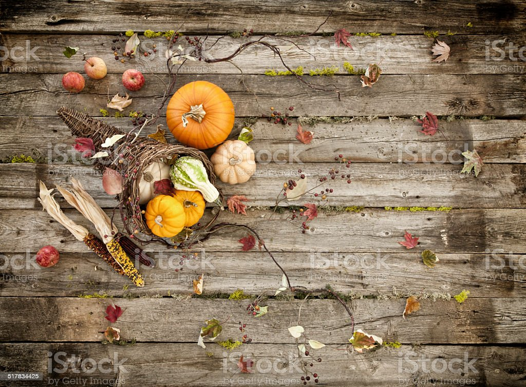 Cornucopia on wood stock photo