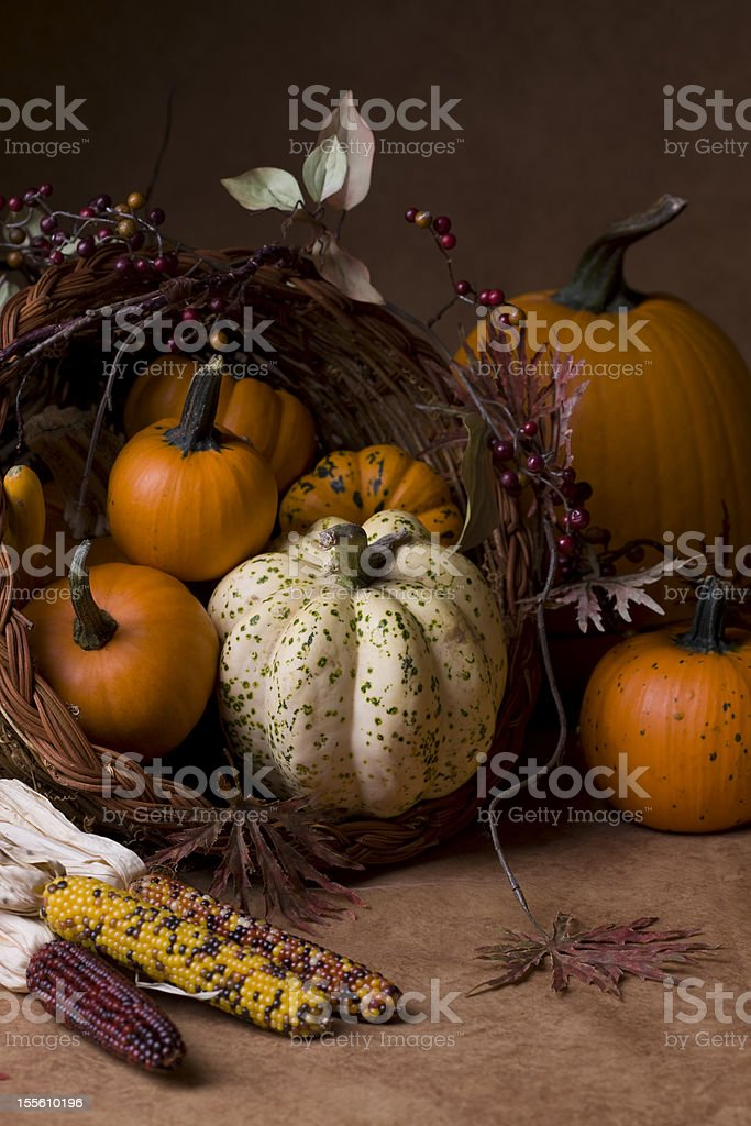 Cornucopia (XXL) royalty-free stock photo