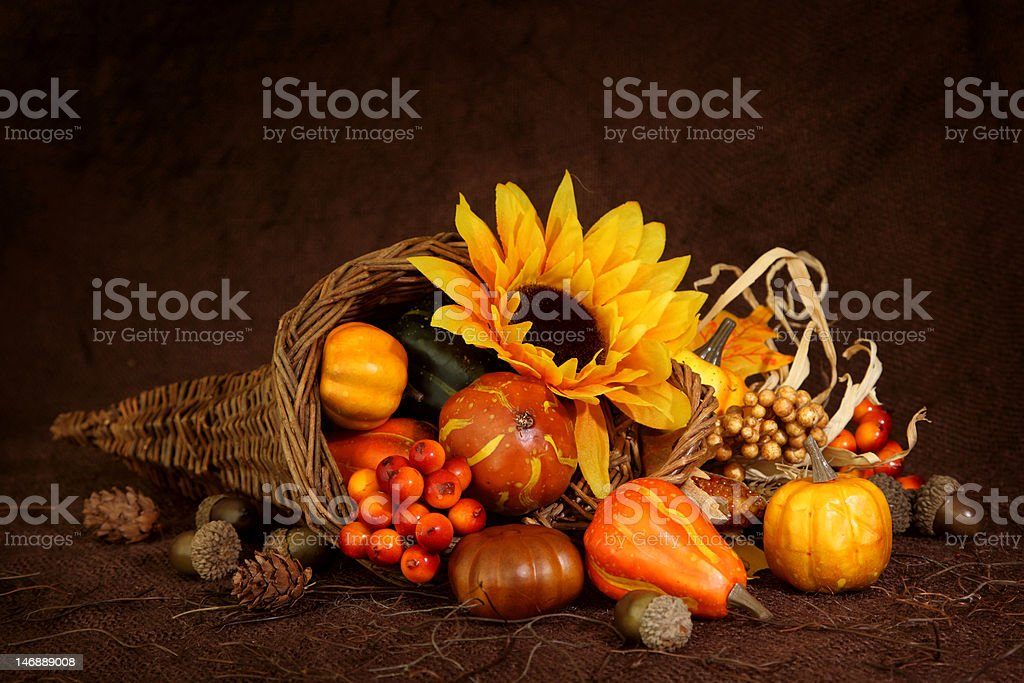 Cornucopia with pumpkins and fall sunflower stock photo