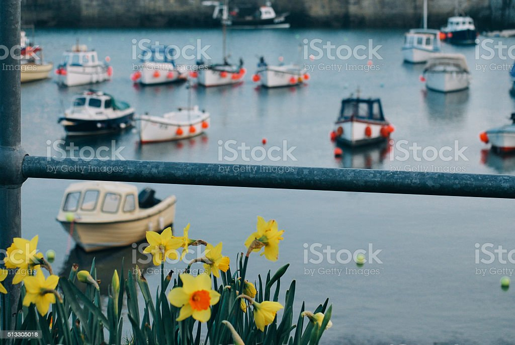 Cornwall harbour boats with daffodils stock photo