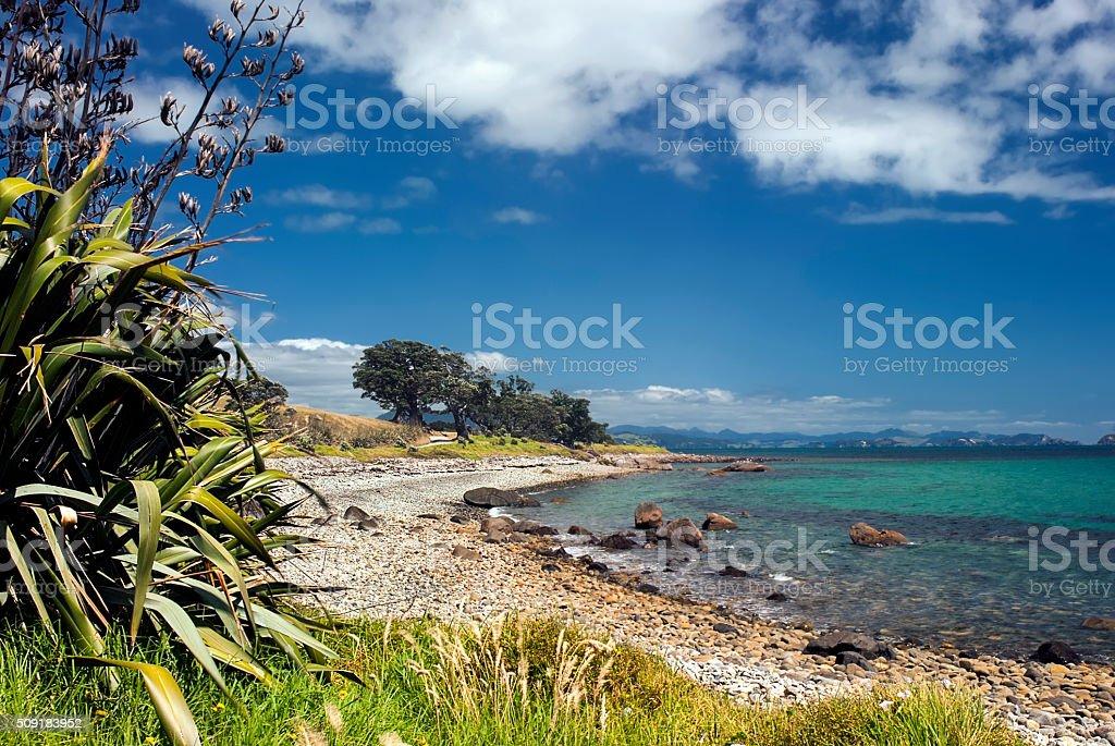 Coromandel peninsular, Firth of Thames, New Zealand stock photo