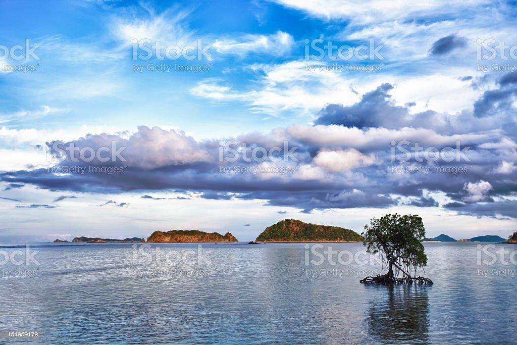 Coron islands lanscape, Palawan, Philippines stock photo