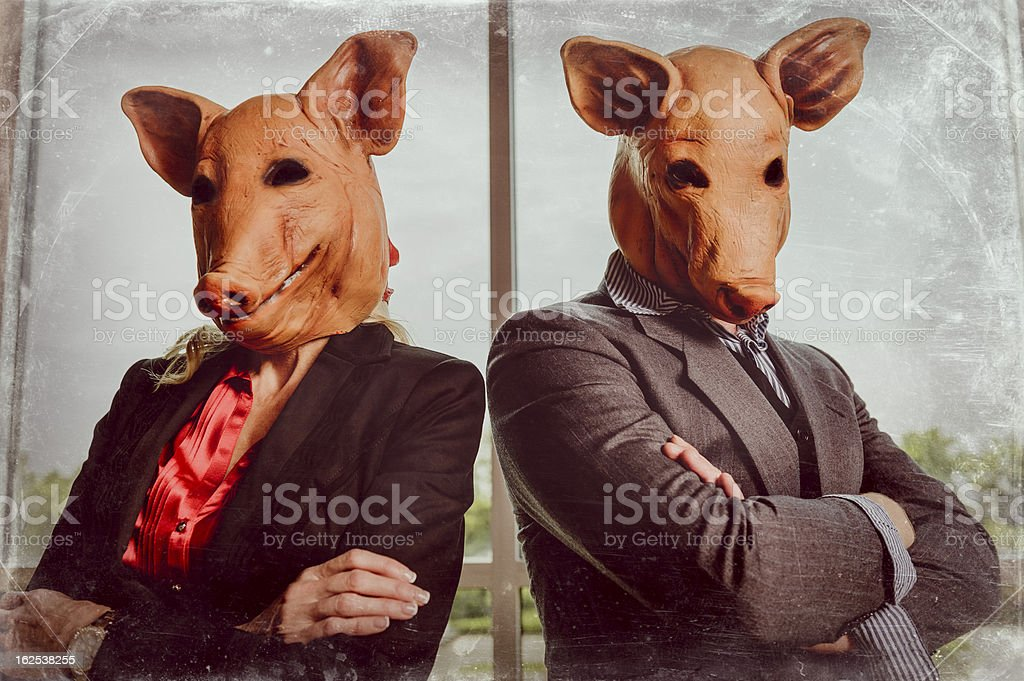 Corporate Swine stock photo