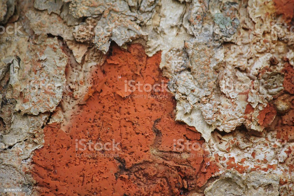 corrosion on woods, wood pattern with double colour stock photo