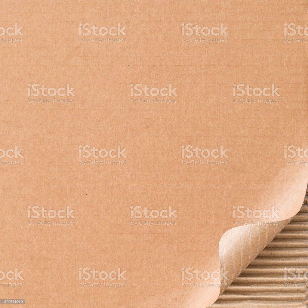 Corrugated cardboard with curled corner stock photo
