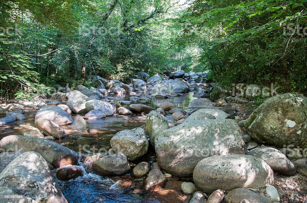 Corsica mountain stream stock photo
