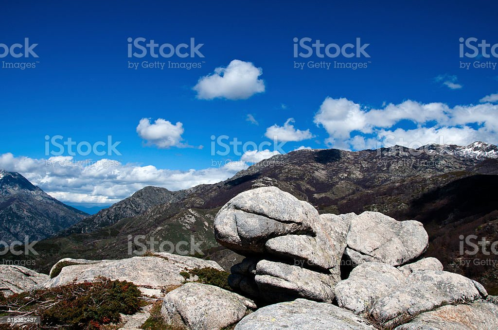 Corse stock photo