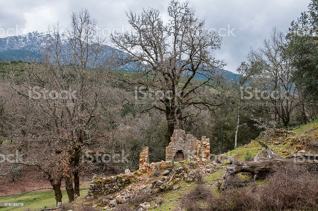 ruine Corse stock photo