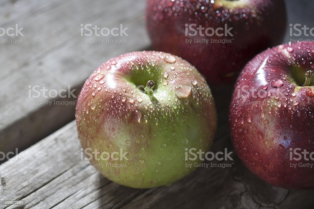 Cortland Apples stock photo