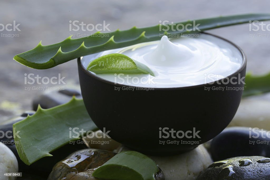 cosmetic cream lotion with natural green fresh aloe vera stock photo