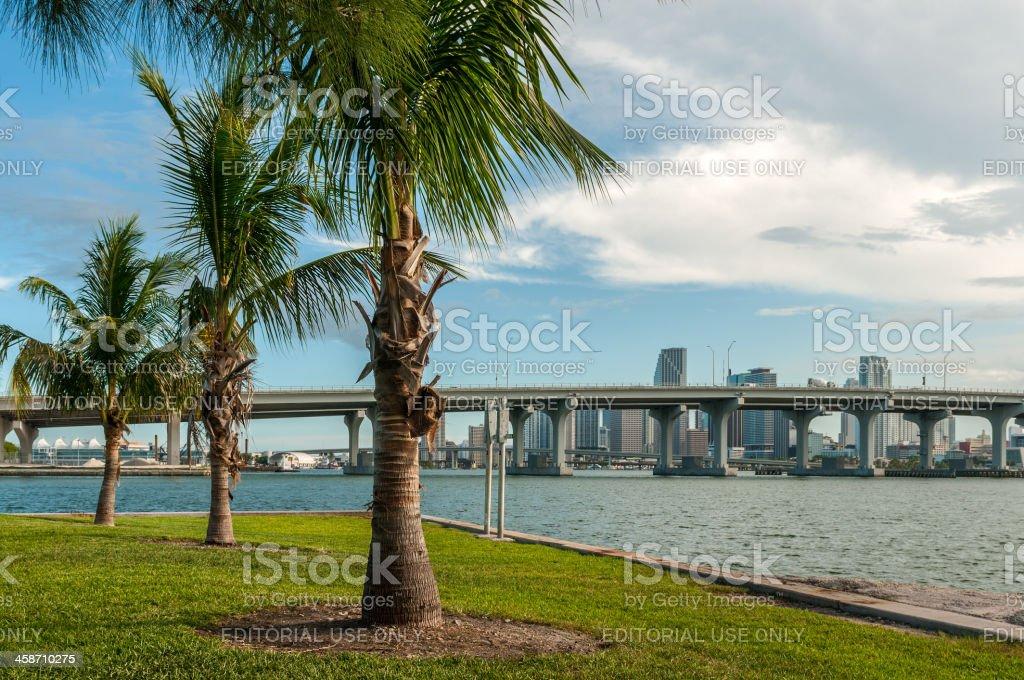 Cosmopolitan Miami stock photo