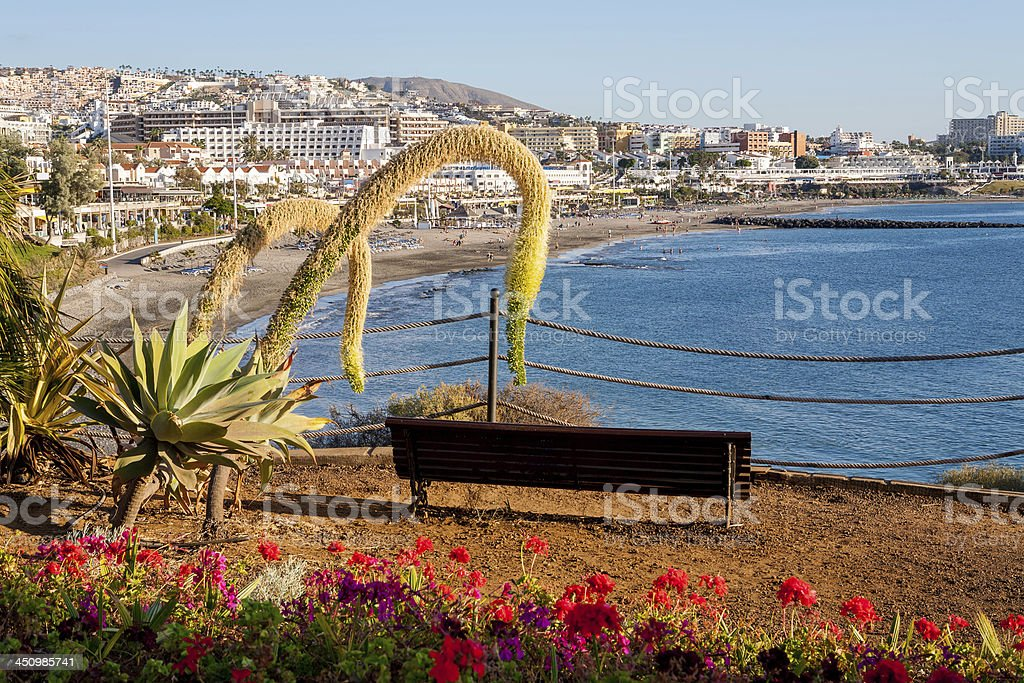 Costa Adeje. Tenerife. Canary Islands stock photo