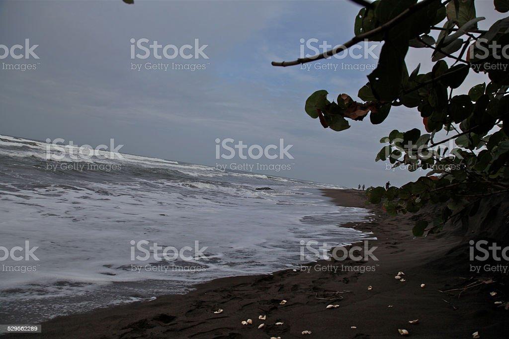 playas de costa rica arena negra stock photo