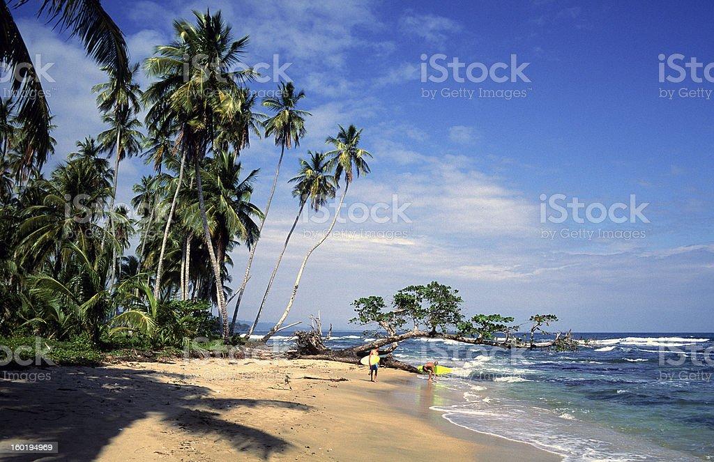 Costa Rica, Limon Province, Playa Chiquita, surfers. stock photo