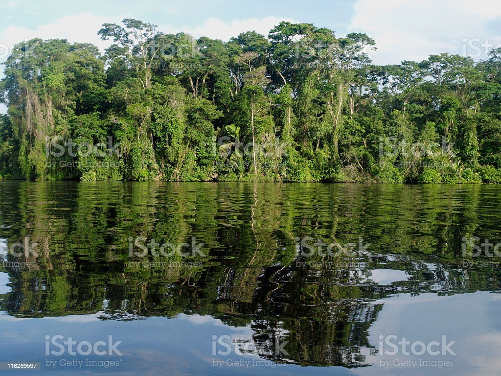 Costa Rica National Park forest reflecting on the lake royalty-free stock photo