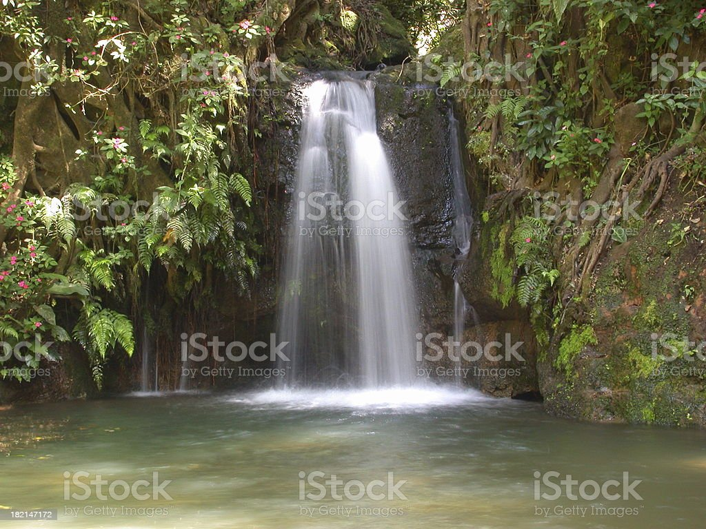 Costa Rican Waterfall stock photo