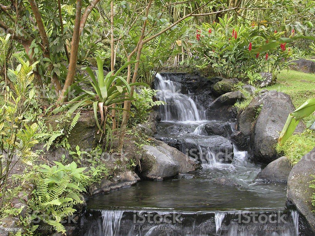 Costa Rico waterfall royalty-free stock photo