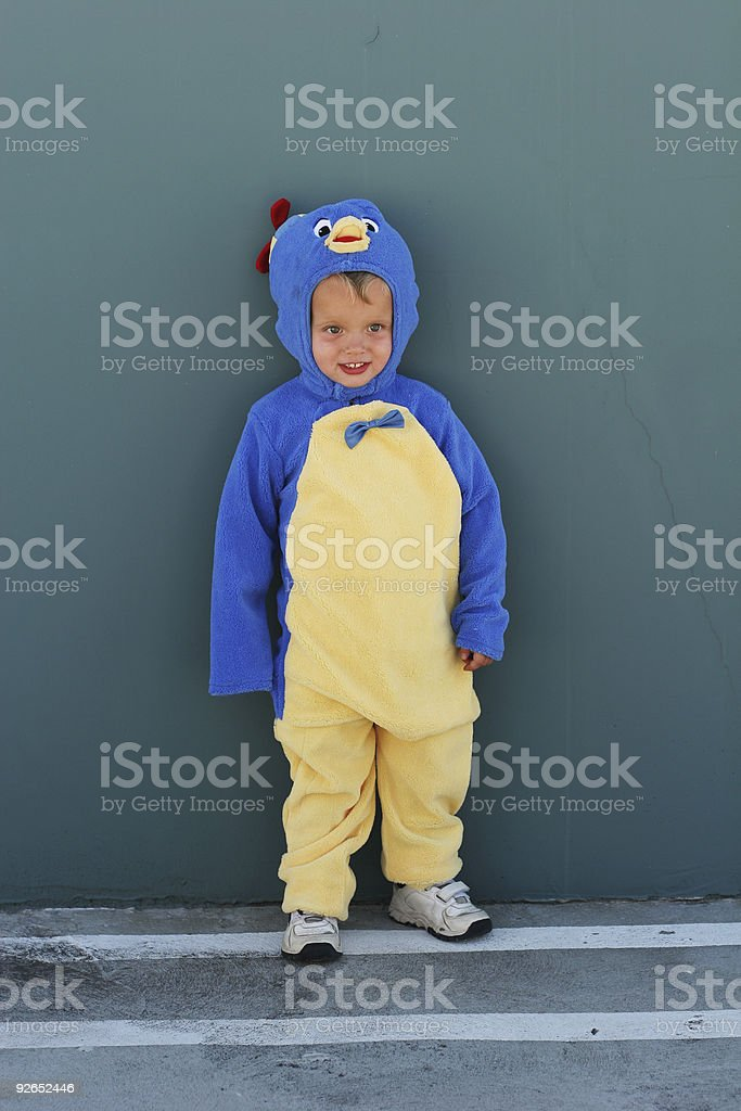 Costume royalty-free stock photo