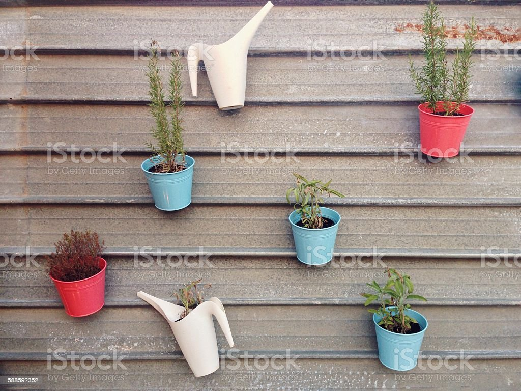 Cosy vegetable garden with herbs and plants stock photo