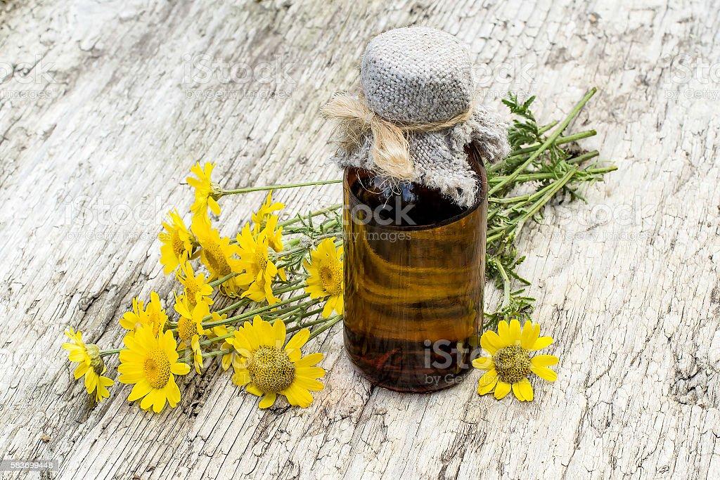 Cota tinctoria (Anthemis tinctoria) and pharmaceutical bottle stock photo