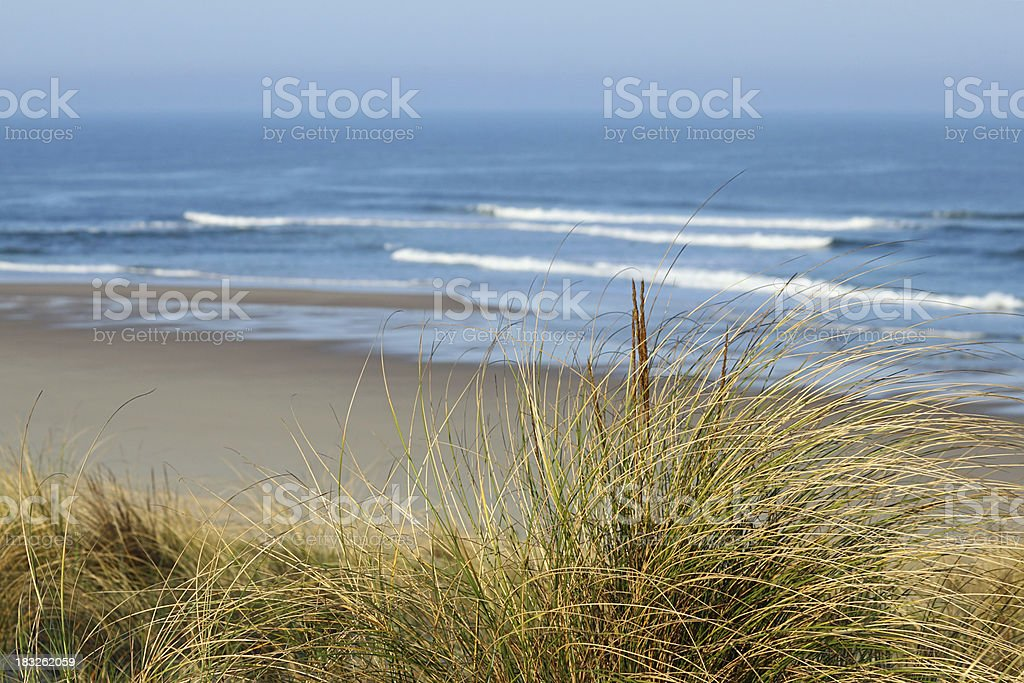 Cote d'Argent - Dunes with grasses and atlantic in background stock photo