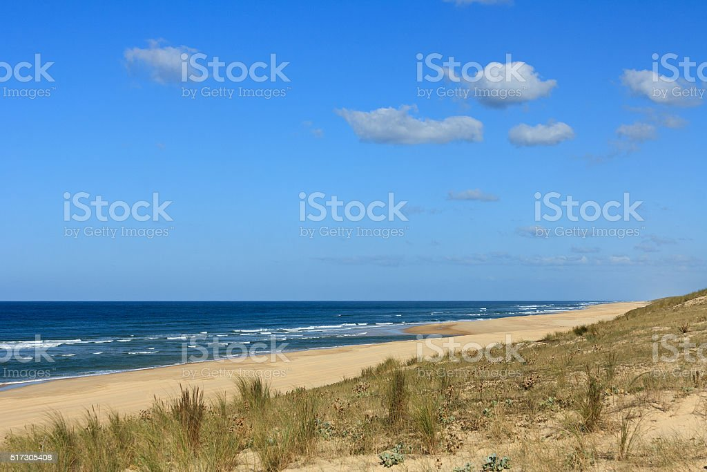 Cote d'Argent - Dunes with grasses beach of Mimizan Plage stock photo