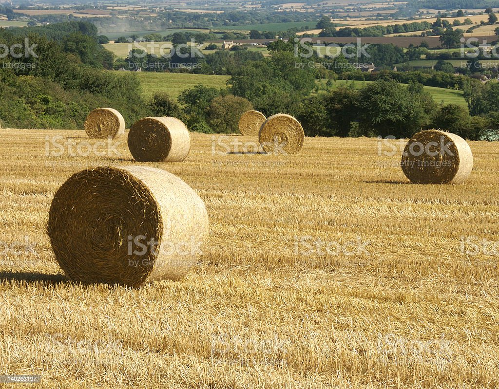 cotswolds harvest royalty-free stock photo