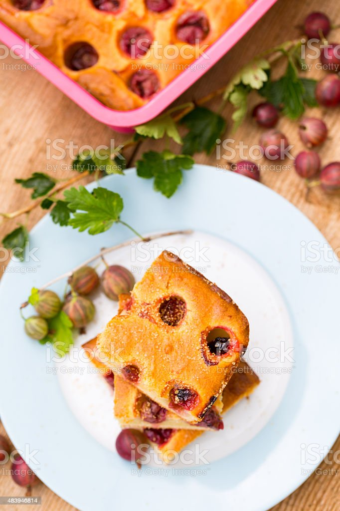Cottage cheese cake with gooseberries stock photo