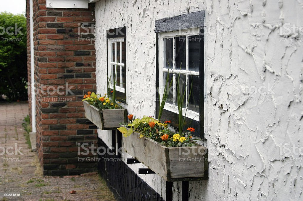 Cottage Flowers royalty-free stock photo