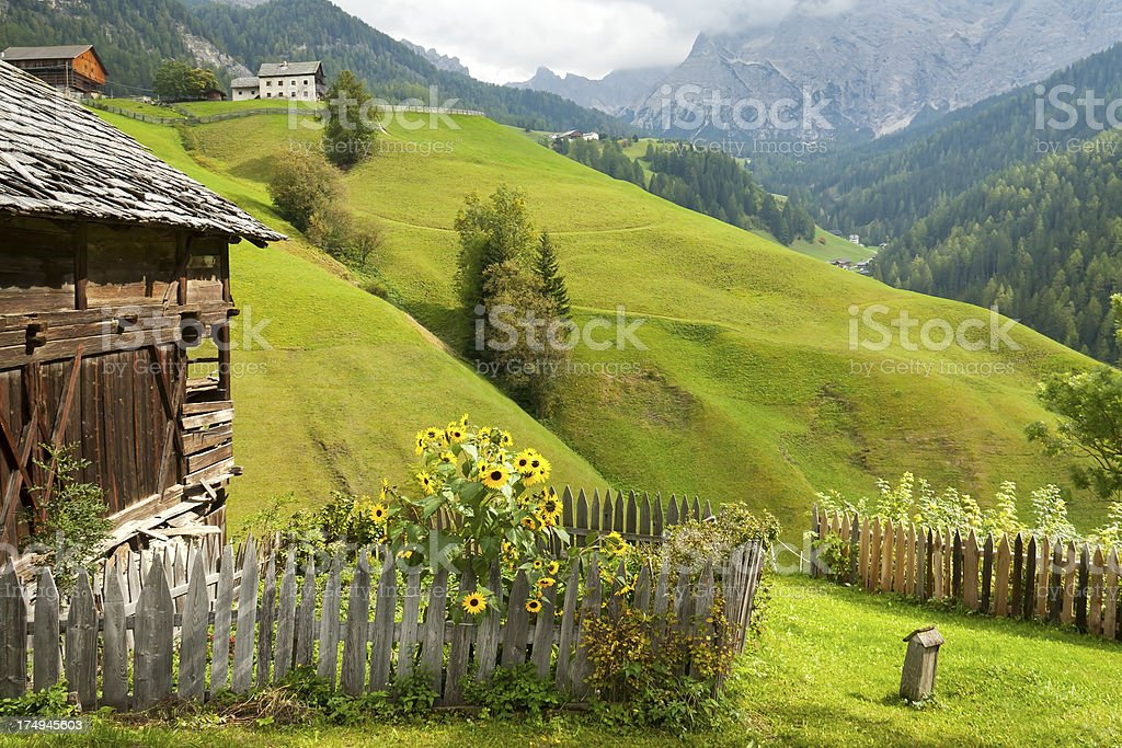 Cottage Garden in the Alps stock photo