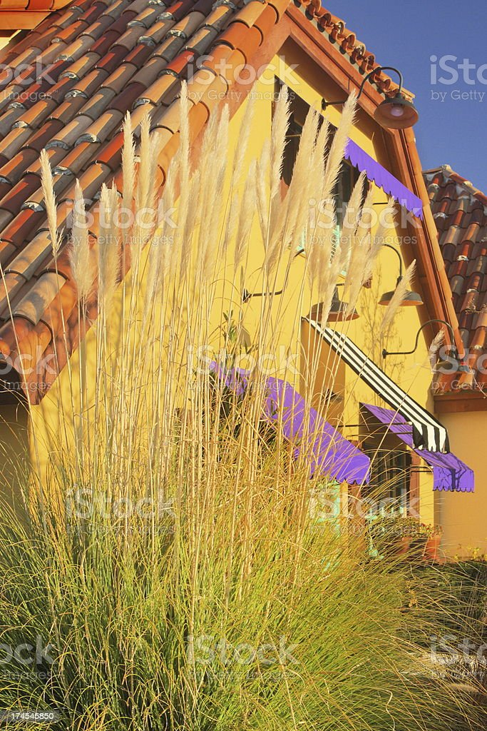 Cottage Mansion Yard Foxtail Garden stock photo
