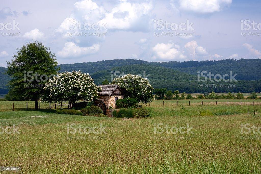 Cottage Scene stock photo