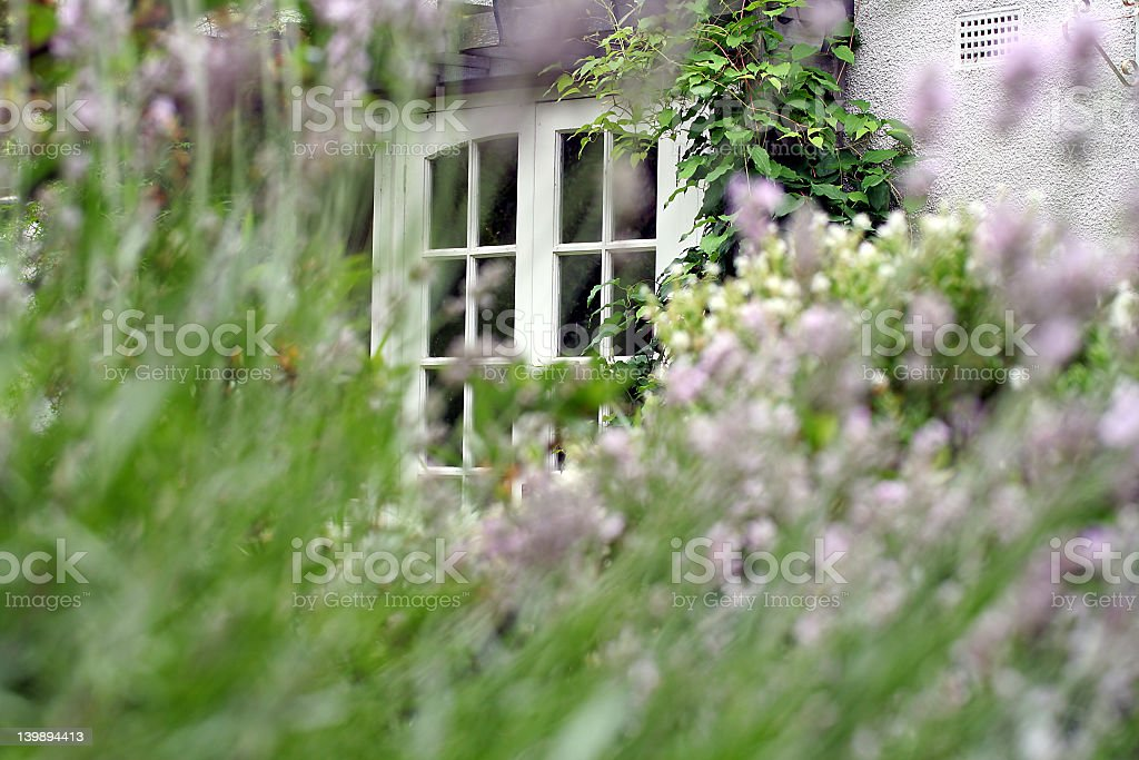 cottage window stock photo