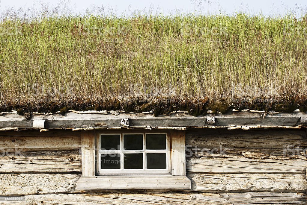 Cottage With Green Roof royalty-free stock photo