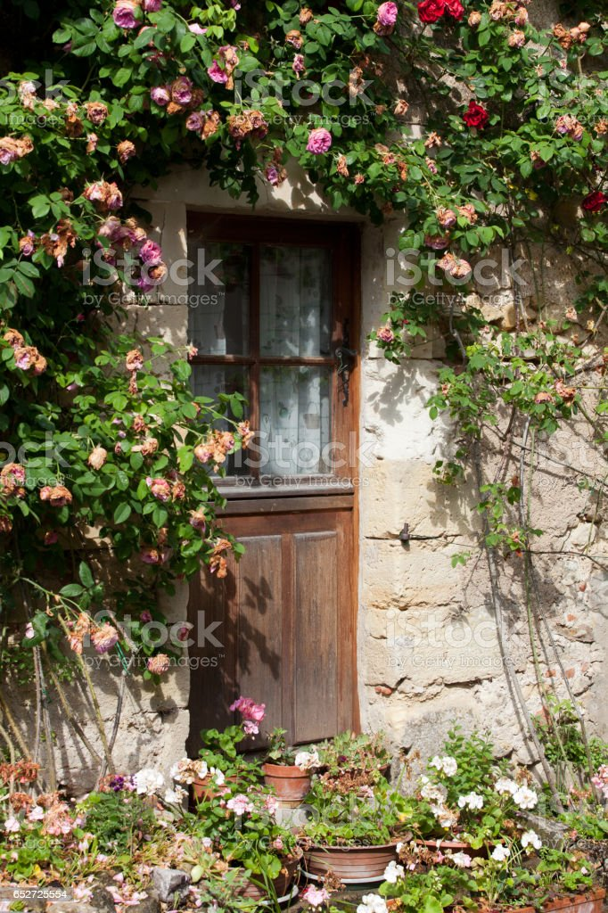 cottage with roses around door stock photo