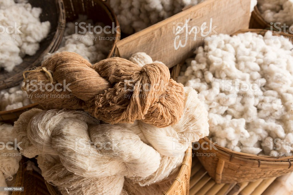 Cotton harvesting stock photo