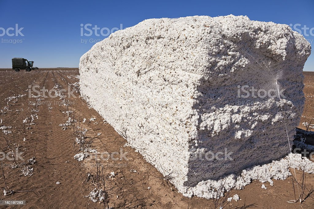 cotton module with combine harvester in background stock photo