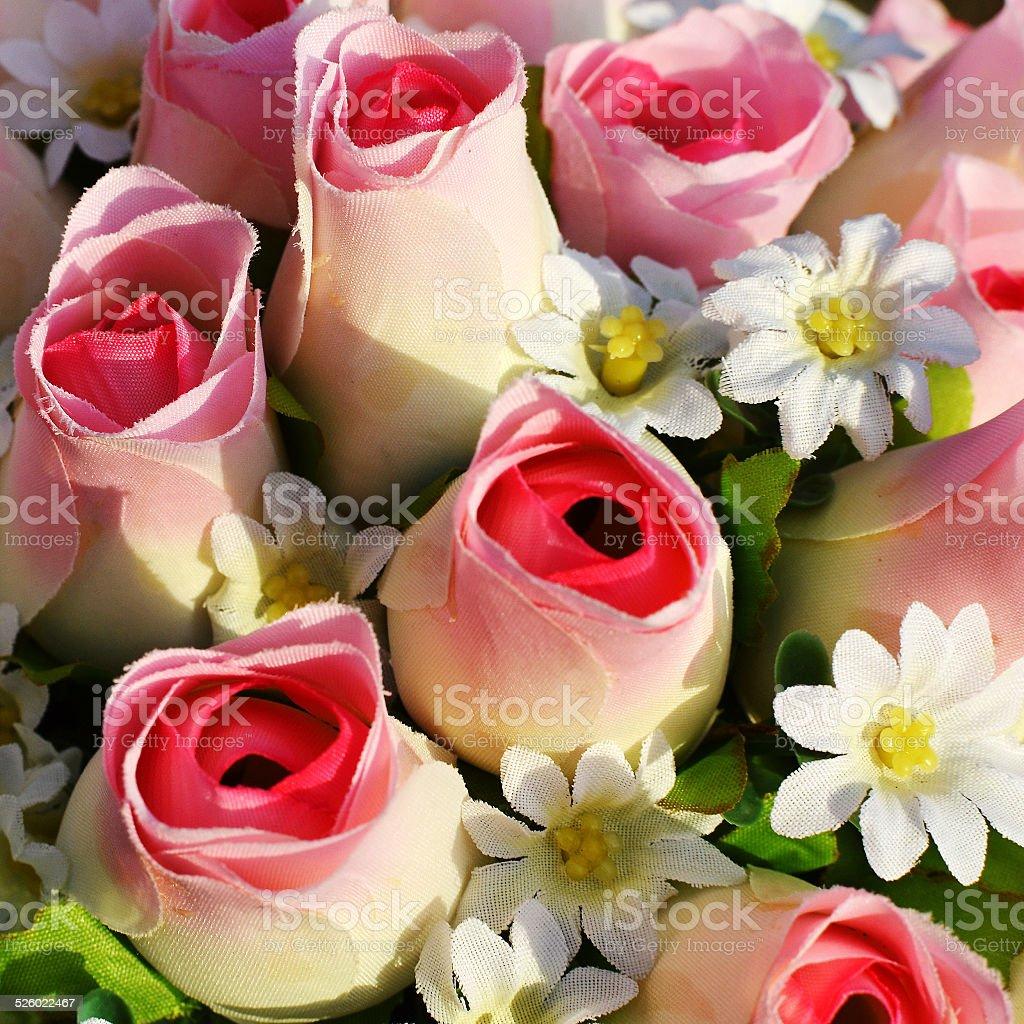 Cotton roses. stock photo