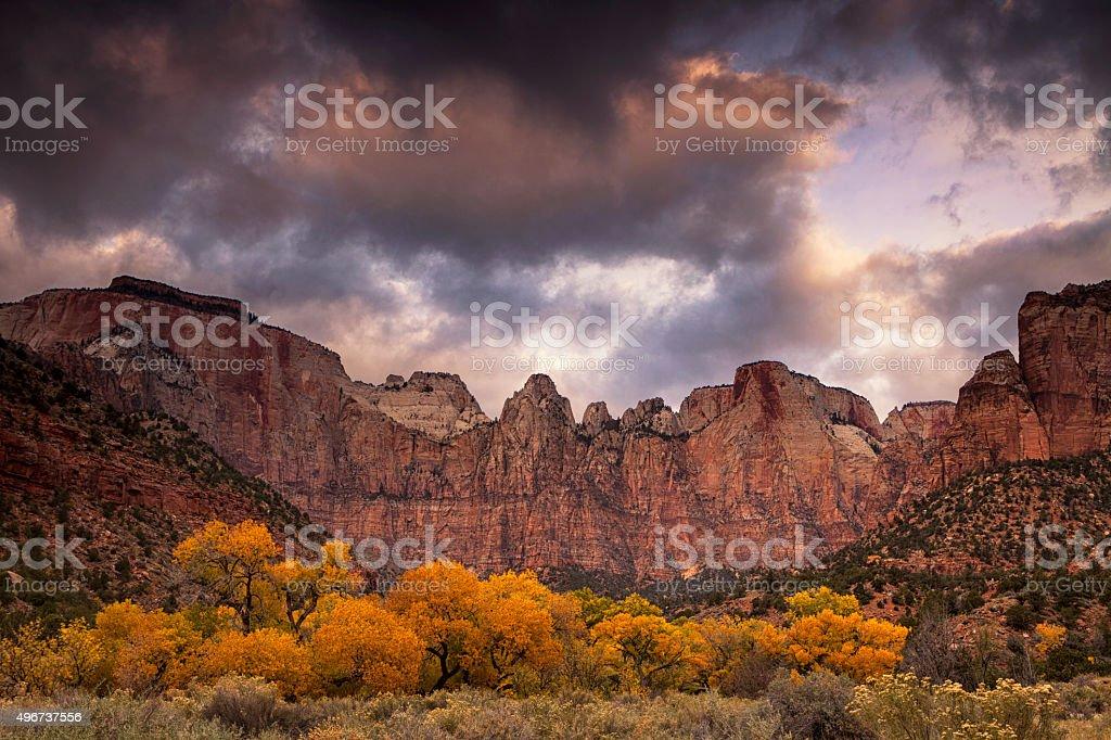 Cottonwoods Of Zion stock photo