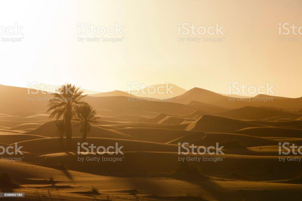 coucher de soleil dans le désert stock photo